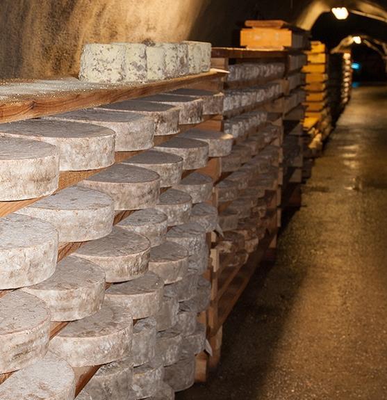 Dégustation et immersion chez l´Artisan Affineur en tunnel Les Caves d´Affinage de Savoie